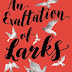 Book Review: An Exaltation of Larks