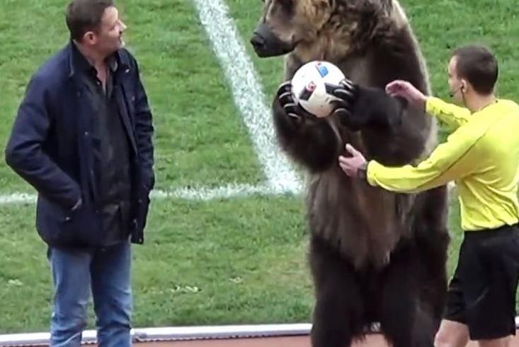 Klub Rusia Dikecam Gara-gara bawa Beruang Ke Lapangan,