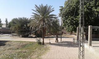 DarGah Haleji Sharif Picture