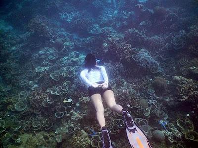 Snorkeling pulau badul