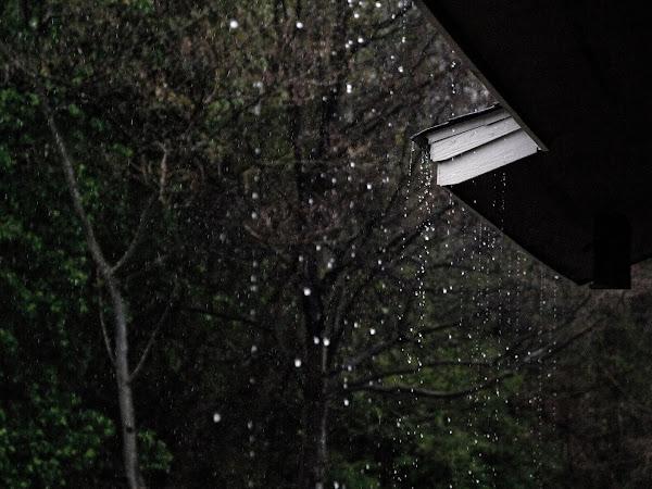 Lagu Tahun 2000an Yang Cocok Untuk Menemani Galau Kamu di Kala Hujan