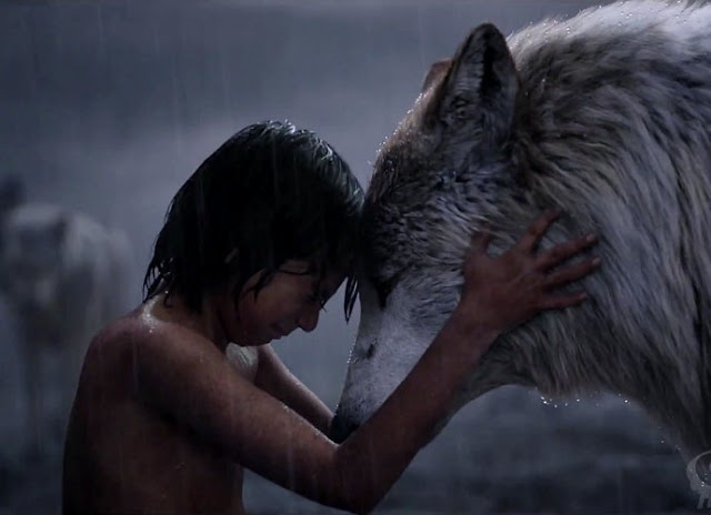 Kisah The Jungle Book yang Mengharukan