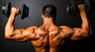 whey protein ,kreatin za masu,suplementi prodaja
