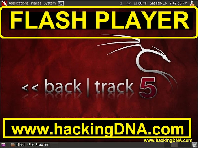 installing flash player on backtrack 5