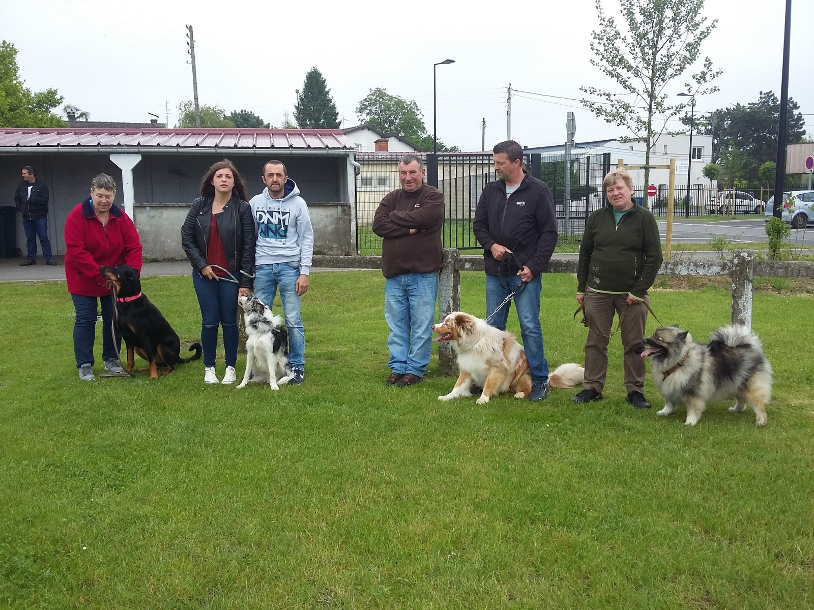 club canin a courcelles