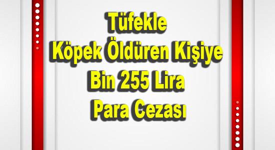 MERSİN, MERSİN SON DAKİKA, Mersin Haber, Tarsus, TARSUS HABER,