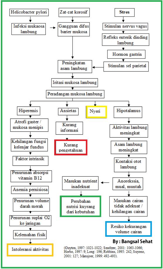 Patofisiologi Dan Pathway Gastritis Doc Blog Ruangguru