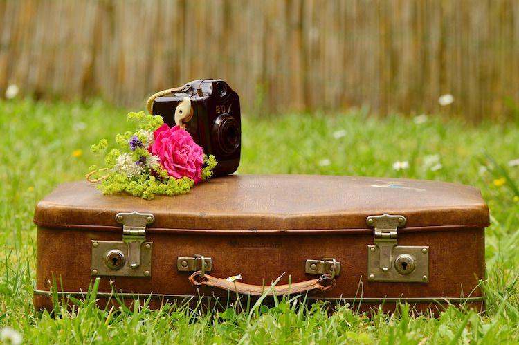 maleta, cámara de fotos