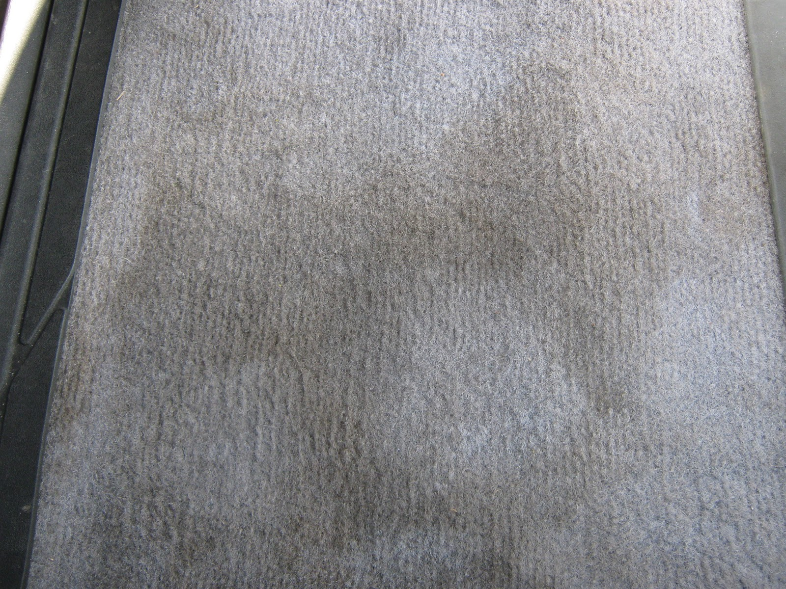 The Humdrum Hero: Borax for Dingy Carpet Stains