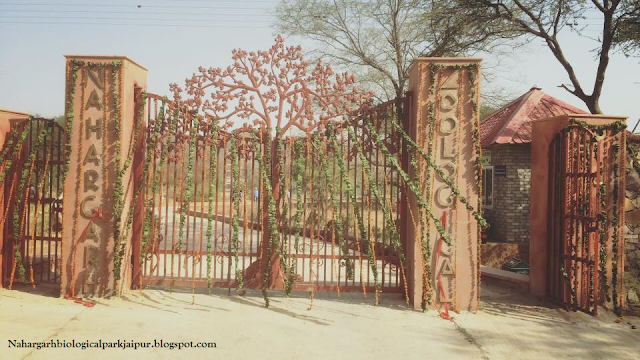 Nahargarh Biological Park Jaipur