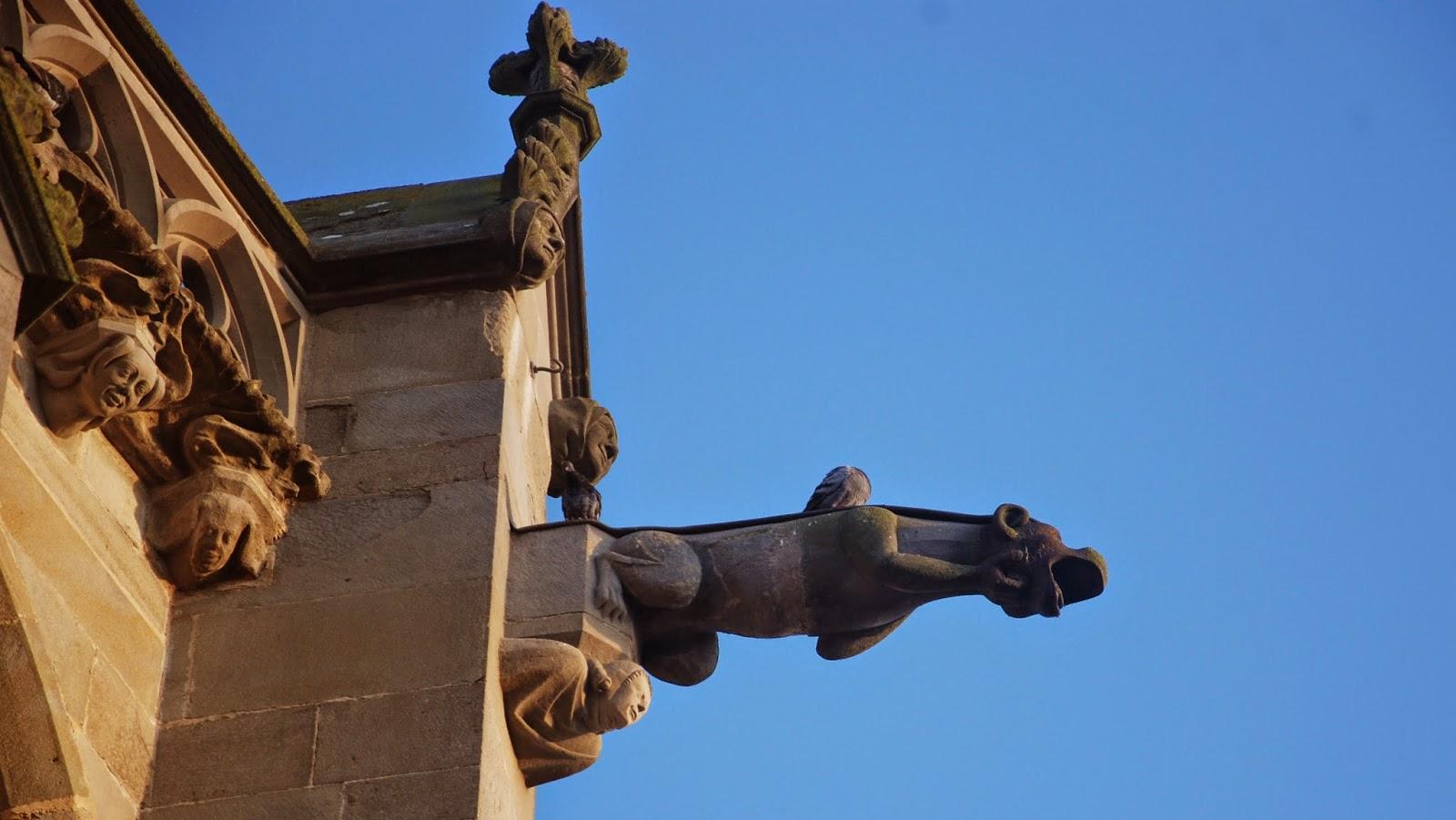 Gárgola en la Basílica St. Nazaire, Carcassonne