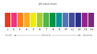 how to raise ph in soil