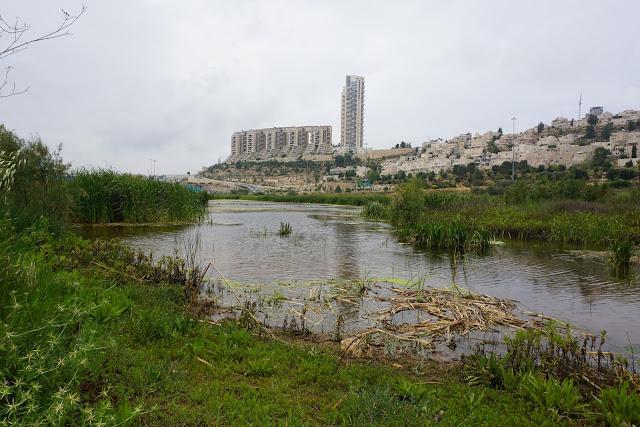 עמק הצבאים בירושלים