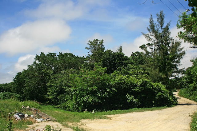 沖縄病院本部壕跡(サキアブ)の写真