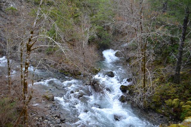 Patrick Creek