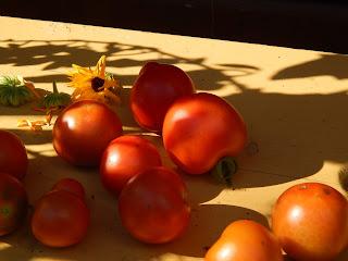 veganer Biogarten
