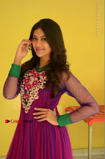 Actress Pooja Jhaveri Latest Stills in Purple Salwar Kameezt at Dwaraka Success Meet  0079.JPG