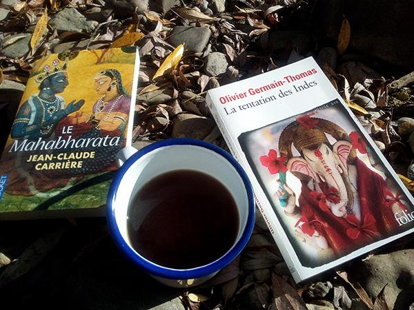 Le Mahabharata et la tentation des indes