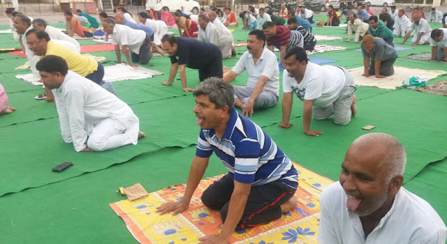 Three-Day Yoga Festival organized in Sector 37 on the occasion of International Yoga Day
