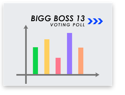bigg boss 13 voting online, voting process