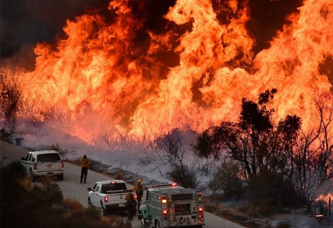 CALIFORNIA: Asciende a 44 la cifra de muertos en gigantesco incendio