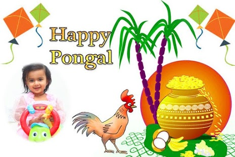 Happy Pongal Wallpapers HD Free Download