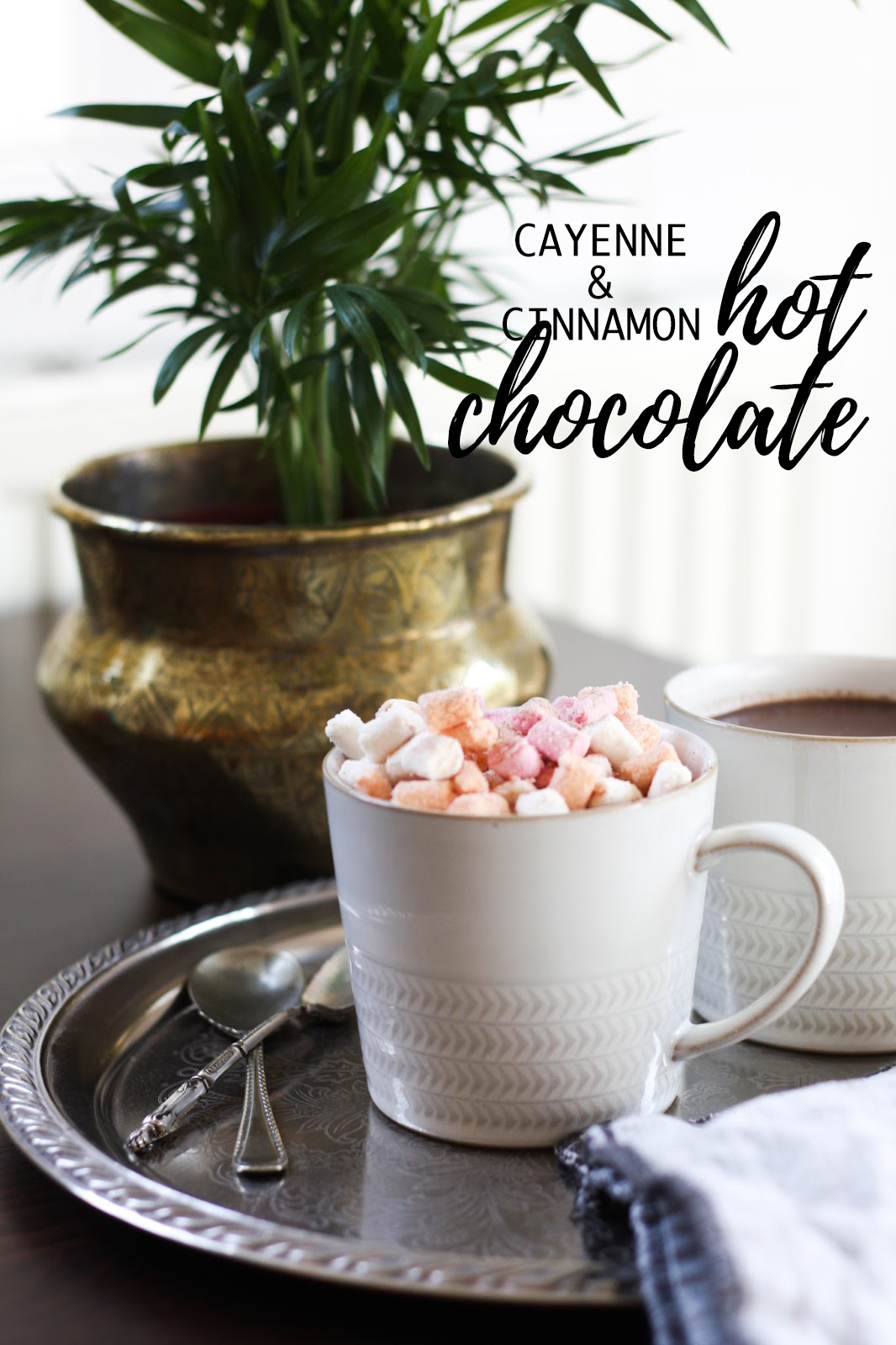 Cayenne & cinnamon hot chocolate