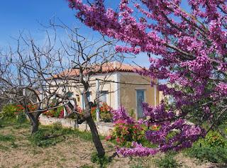 греция весной