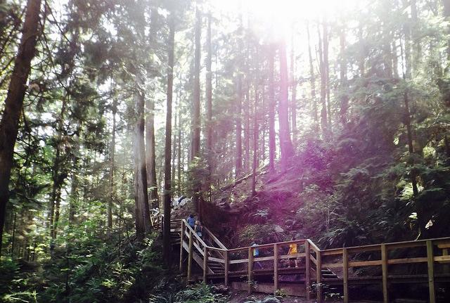 Hiking Baden Trail