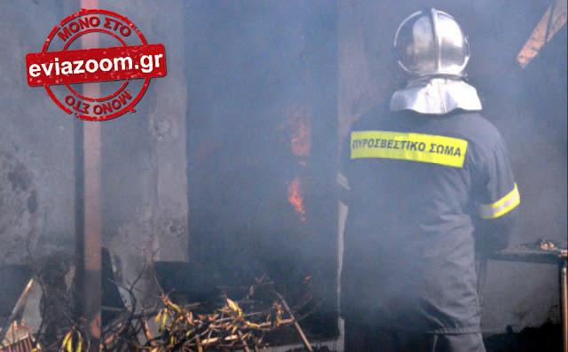 Ερέτρια: Μονοκατοικία τυλίχτηκε στις φλόγες!