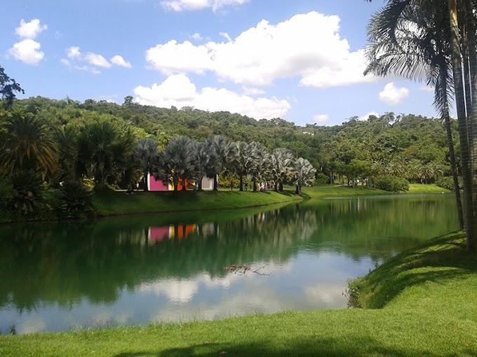 Inhotim: o maior museu de arte a céu aberto da América Latina em Brumadinho - MG
