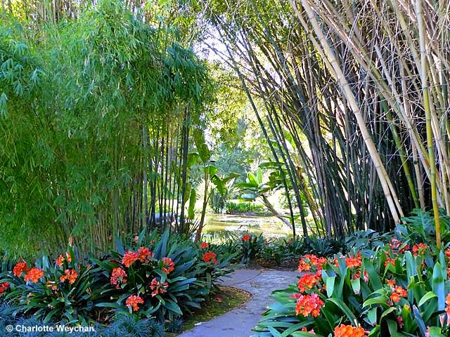 The Huntington Library and Gardens - a slice of paradise in Los ...