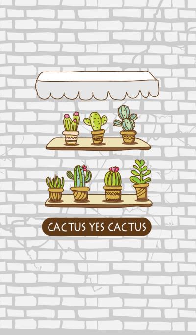cactus yes cactus
