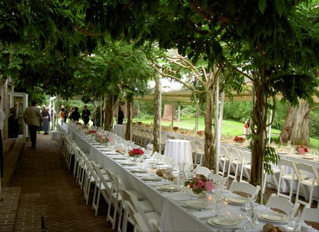 Mad Woman's To Do List: Wedding Wednesday: Vineyard Wedding