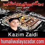 http://www.humaliwalayazadar.com/2017/09/kazim-zaidi-nohay-2018.html