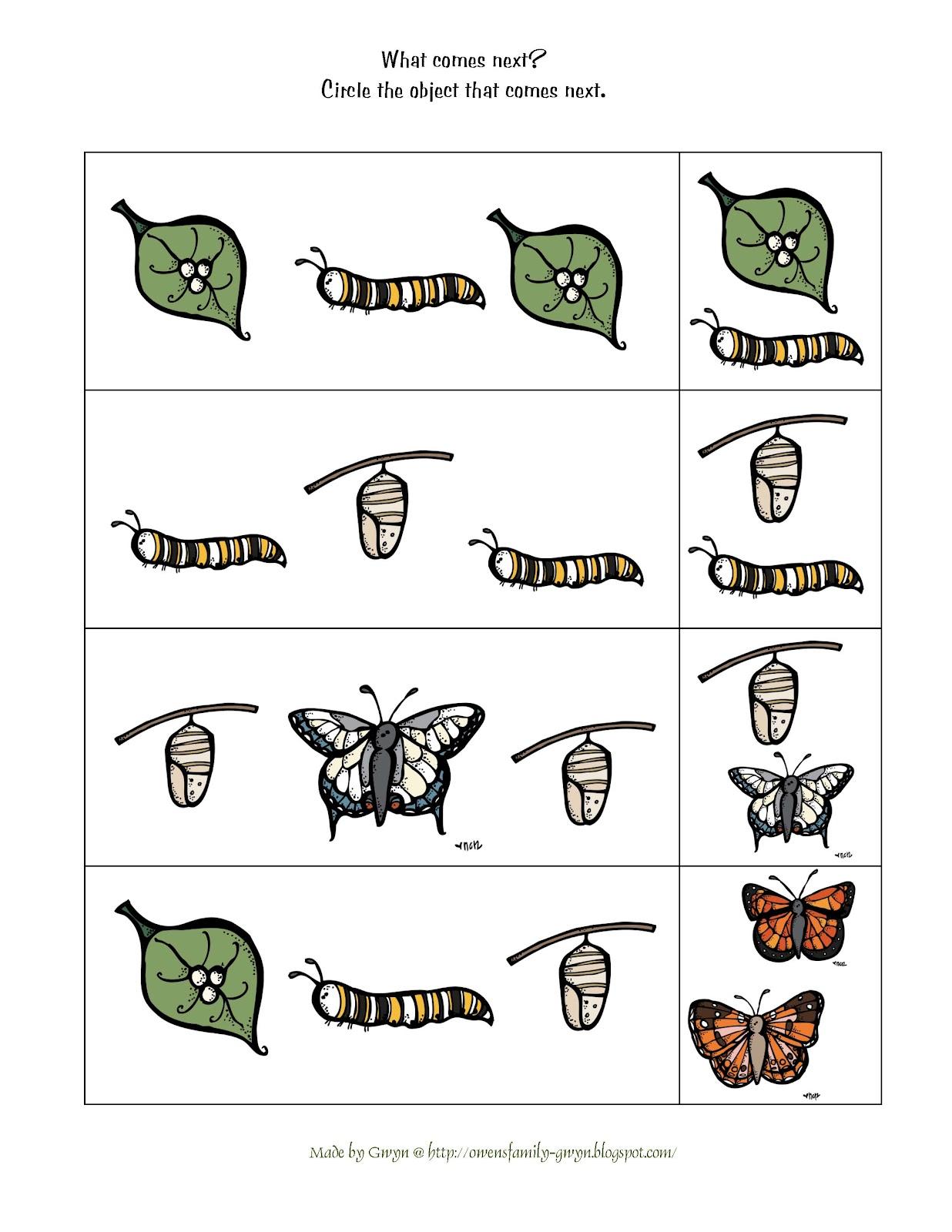 カレンダー 2013年カレンダー六曜 : Butterfly Life Cycle Printable