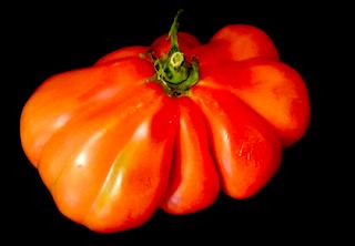 https://fr.wikipedia.org/wiki/Tomate