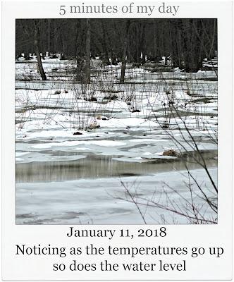 January 11, 2018