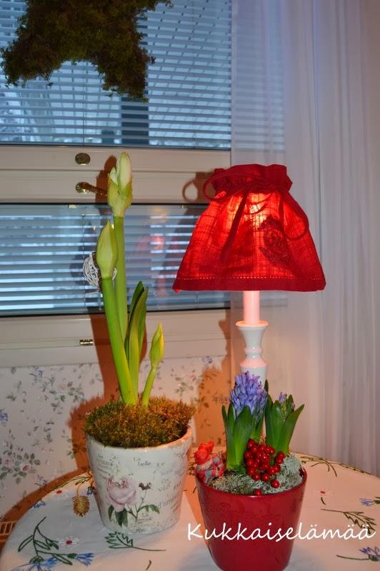 tirilän puutarha aukioloajat