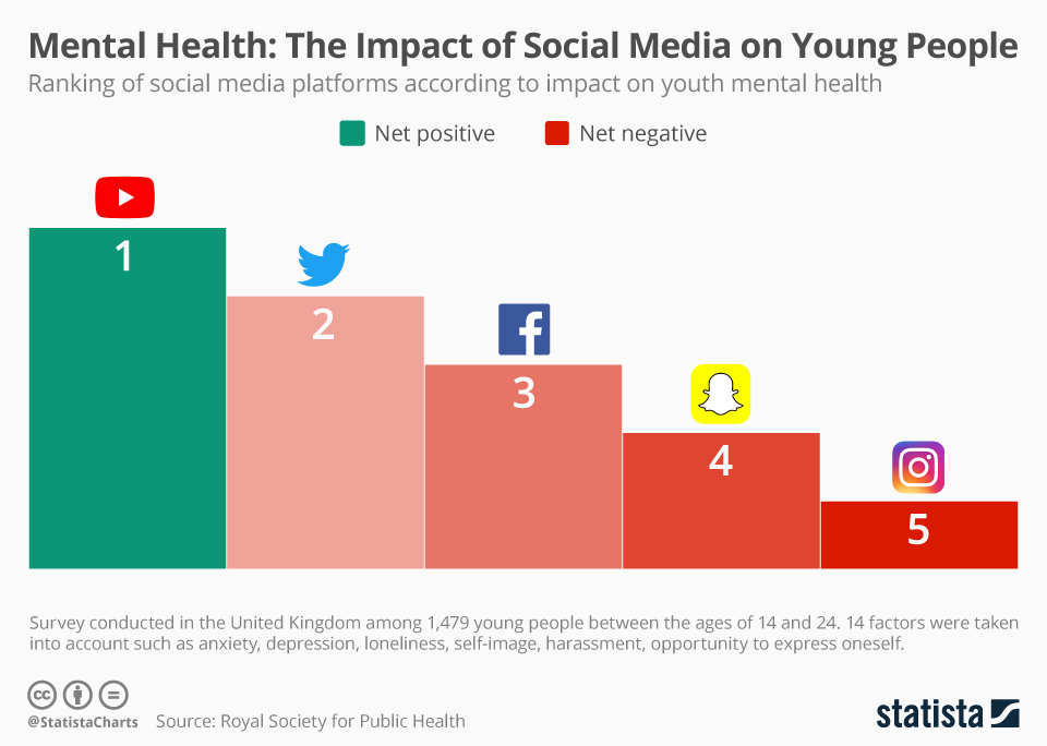Effects Of Social Media On The Mental Health Of Young