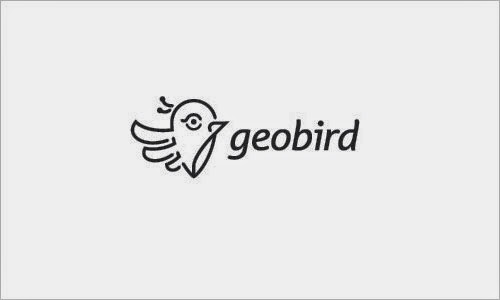 Bold & Thin line Logo Geobird