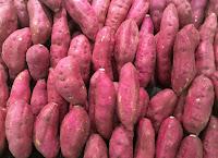 kandungan ubi ungu untuk kesehatan