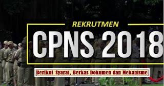 Syarat, Berkas Dokumen dan Mekanisme Cara Mendaftar CPNS Tahun ini