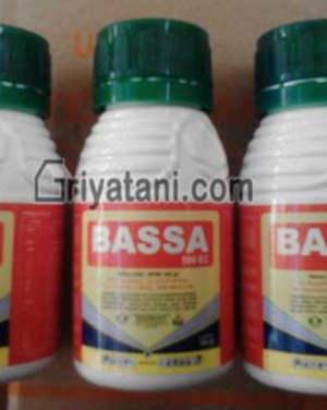Bassa 500EC