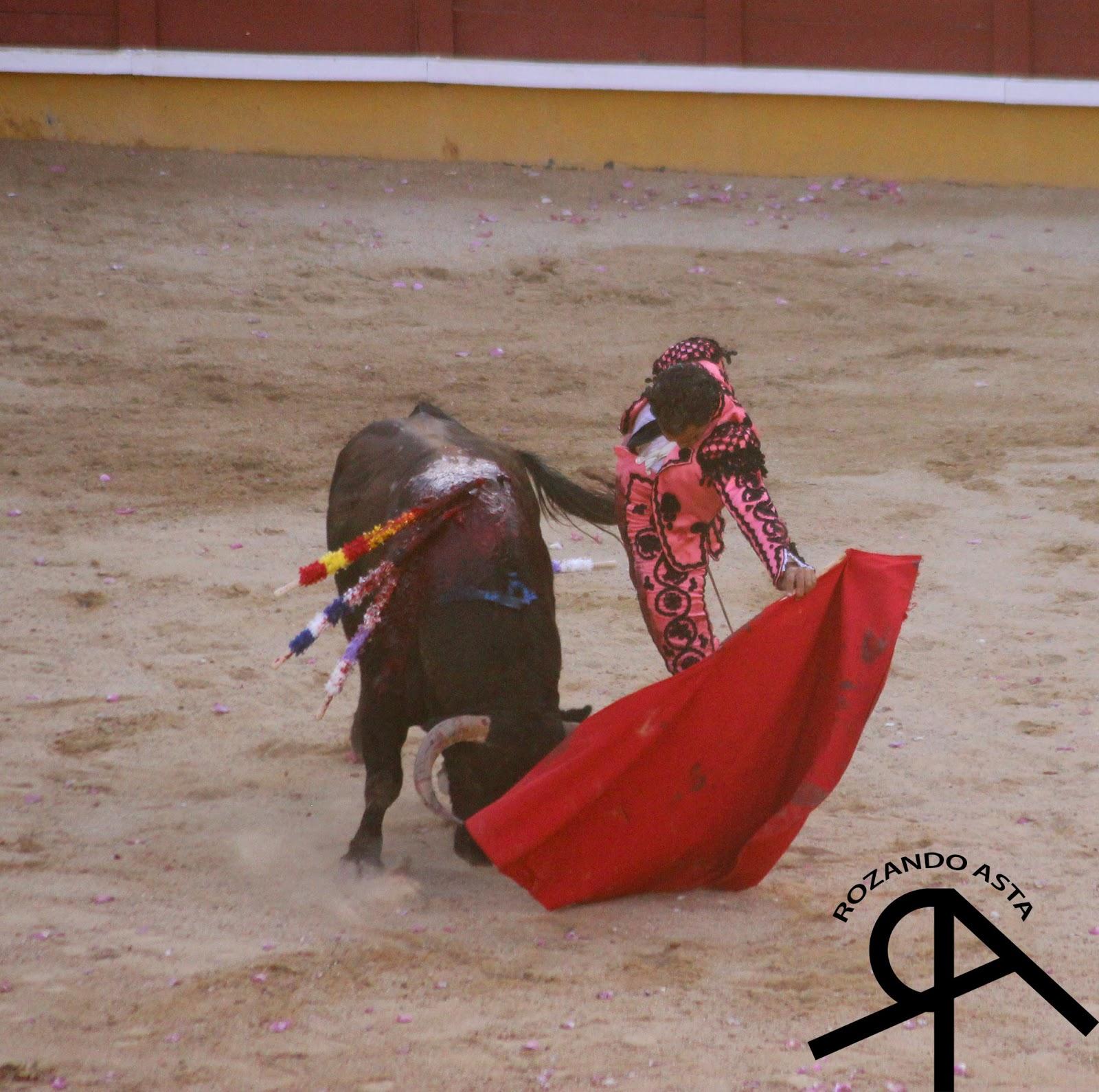 Encierro de guadalajara 2015 - 3 part 6