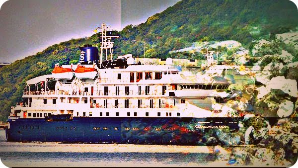 Ulah Caledonian Sky di Raja Ampat Dorong Jalur Pelayaran Pariwisata