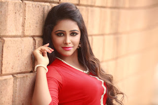 Actress Subiksha Glam Picture Session 006.jpg