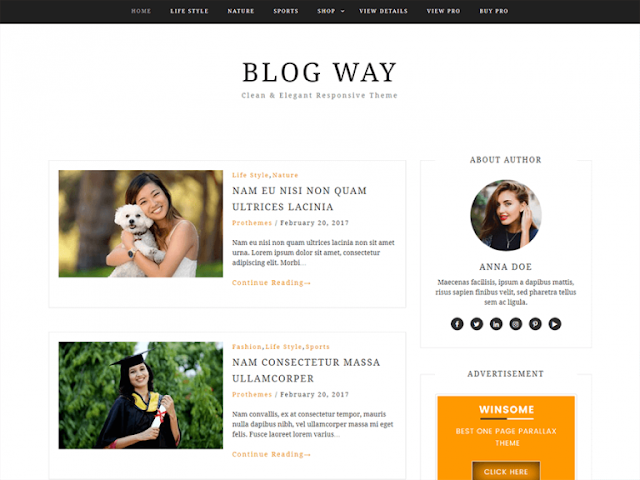 Blog Way Wordpress Teması