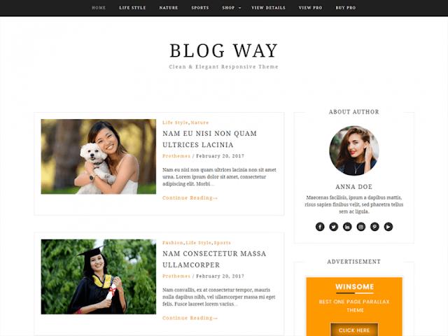 Blog Way Wordpress Teması