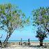 Obyek Wisata Pantai Camplong di Kabupaten Sampang